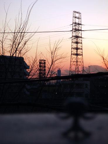 20100109skytree02