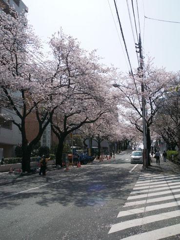 20100416miyazakidai01