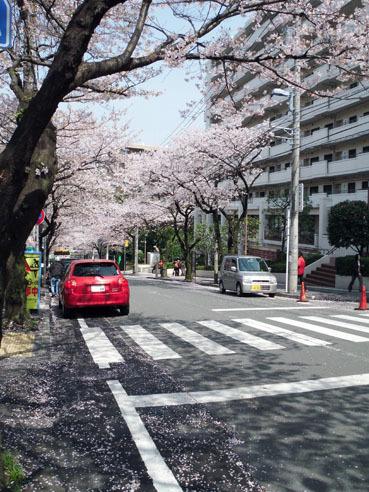 20100416miyazakidai02