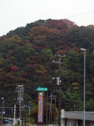 20101118kouyou01