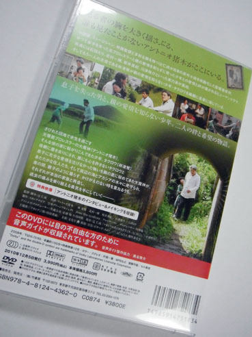 20101123acacia02