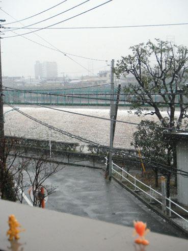 20110211yuki03