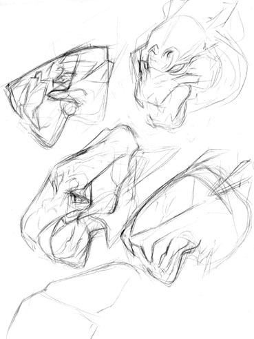 20110710proudrytigerfacesketch1