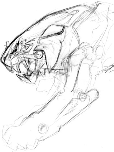 20110710proudrytigerfacesketch2