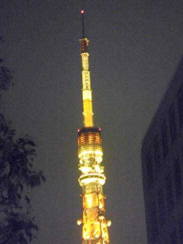20121219tokyotawar02up