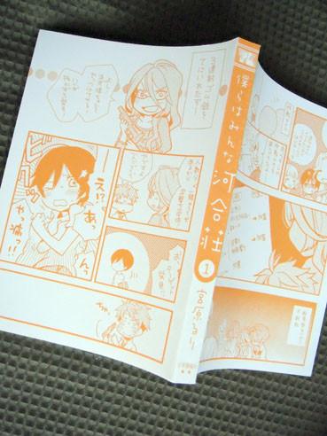 20121220kawaisou01incover