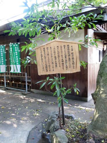 20160402katatsuiware