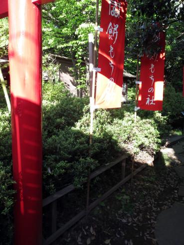 20160504kikyouyamori